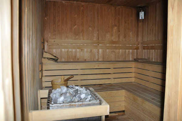 The palace sauna club