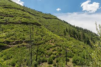Photo: View across Dalton Canyon