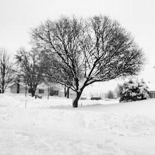 Photo: #invierno en #Québec  #nieve