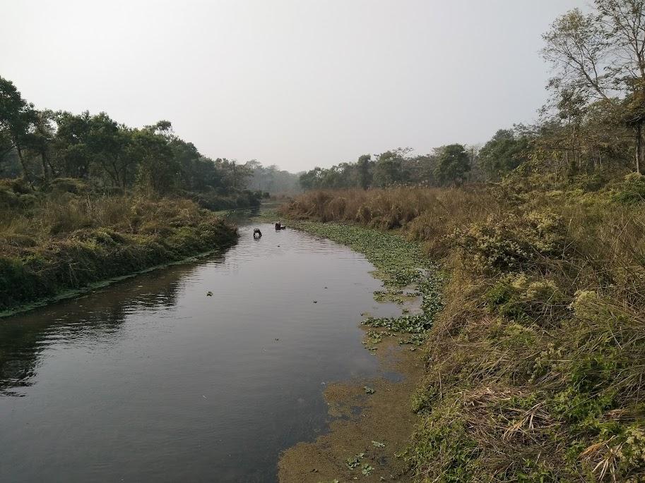 チトワン国立公園の川