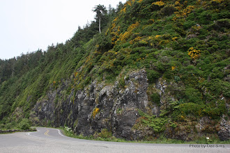 Photo: (Year 2) Day 351 - Big Cliffs