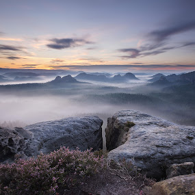 Foggy claws at Kleiner Winterberg by Petr Musil - Landscapes Sunsets & Sunrises ( fog, sunset, winterberg, kleiner, germany, claws, saxony )
