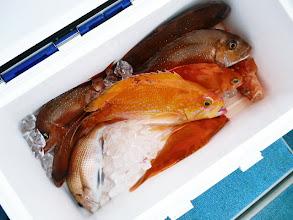 Photo: シモカワさんのクーラーBOXです。