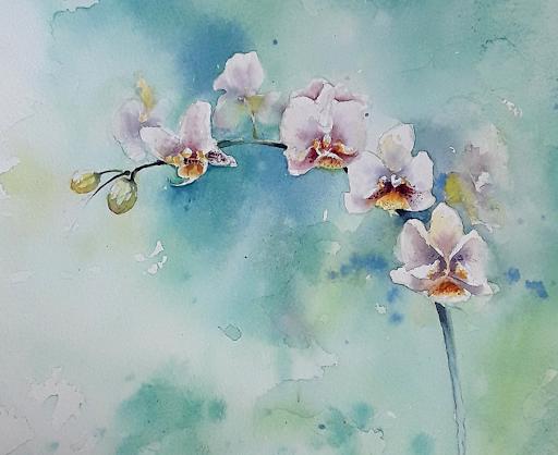 AQUARELLES JEANNE PAPA  Biennale d'orchidées PRINGY77 fontainebleau seine et marne