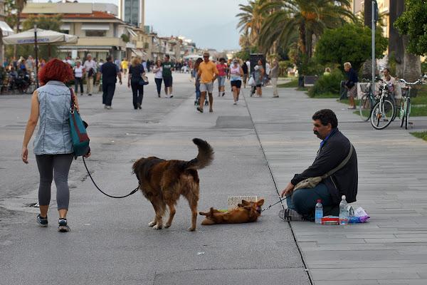 passeggiata con cane di lorenzo_davighi