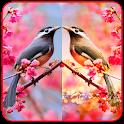 Photo Mirror Effects icon