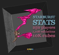 Photo: eyewire.org   starburst neuron stats