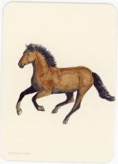 Карта из колоды метафорических карт Ресилио: лошадь