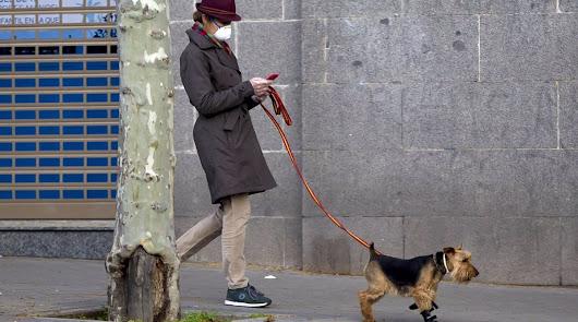 ¿Puedo pasear al perro durante el toque de queda?