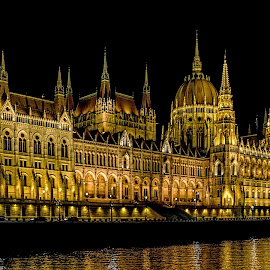 Hungarian Parliament by Richard Michael Lingo - Buildings & Architecture Public & Historical ( public, buildings, budapest, parliament, architecture )