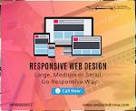Responsive Website Design South Delhi