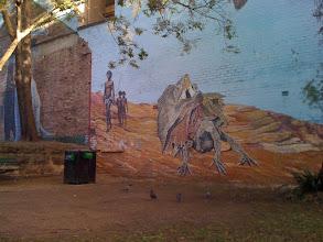 Photo: In a Redfern park, Sydney, 2012.