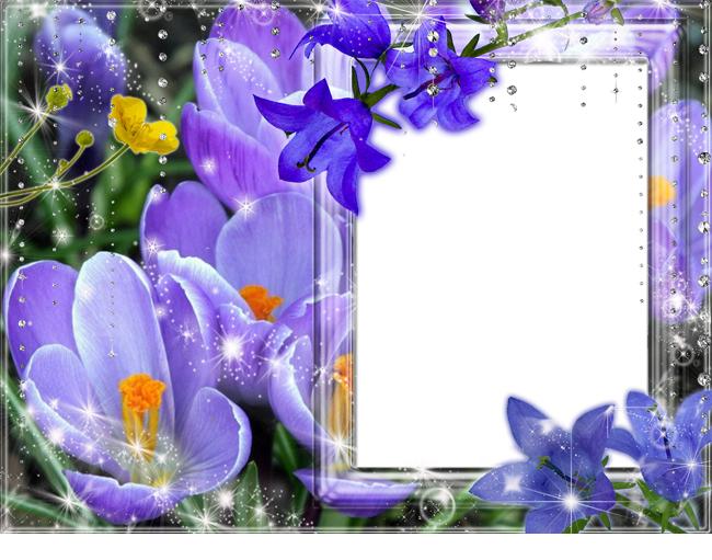 flower frames photo maker screenshot