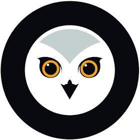 Owl Guardian