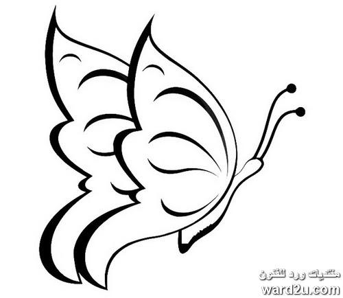رسم فراشات جاهزة للتلوين