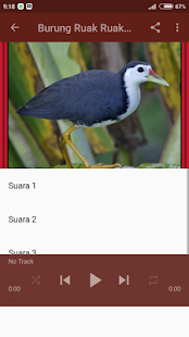 Suara Burung Ruak Ruak Terbaru Offline - náhled