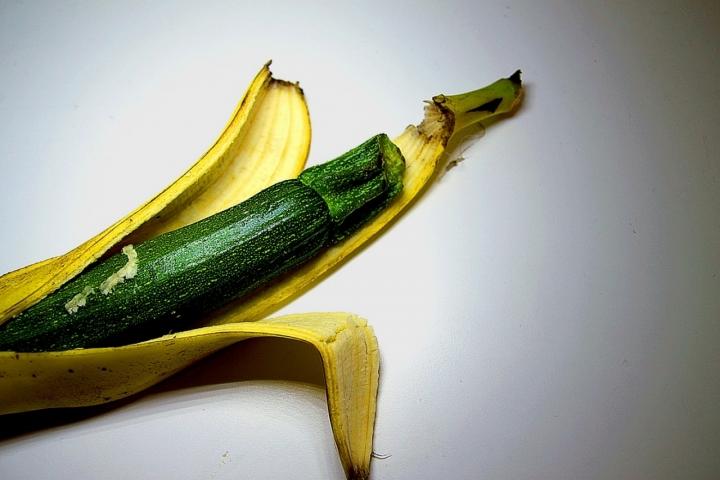 OGM Organismi Geneticamente Modificati di gds75photo