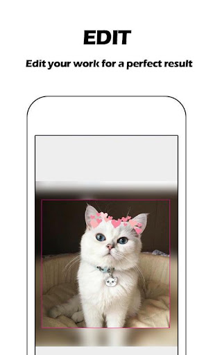 Heart Crown Photo Editor - Live Face, Collage 2.2.8 screenshots 2