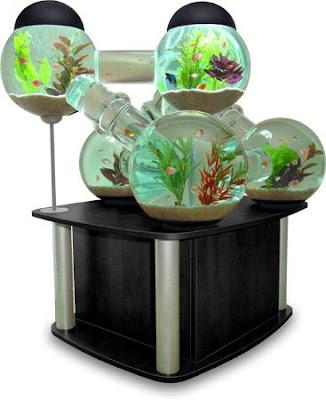 近未来的な水槽「Silverfish Aquarium」