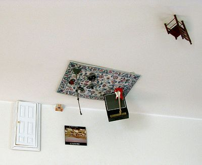 天井のスペースにできた小さな世界