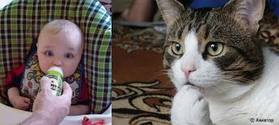 動物の人間の似ているシチュエーションの写真25枚