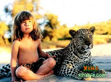 アフリカの野生でクラスTippiちゃんのお話