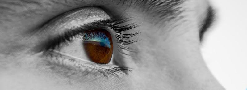 La sua terra negli occhi, la sua terra nel cuore. di Jules