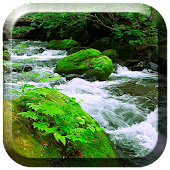 Green Stream Live Wallpaper