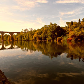 Albi by Cristiana Chivarria - Landscapes Waterscapes (  )
