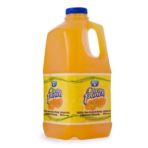 Jugo Alpina Citrus Punch Naranja 1.8Lt