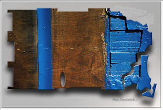 Foto: 2012 01 15 - D 37 C 50 - P 150 - Blauzaun