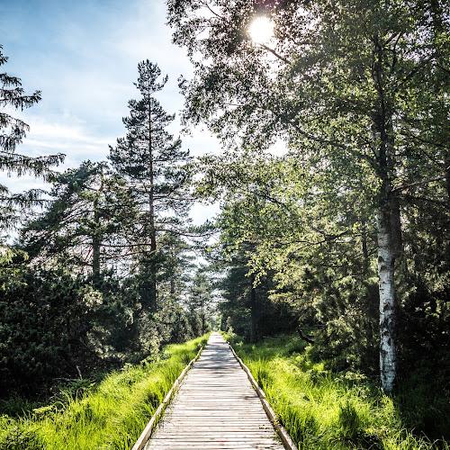 Was bedeutet EMAS? im Schwarzwald