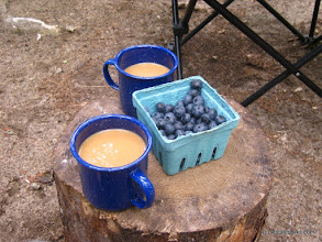 Photo: Blueberries and coffee at camp, Big Deer State Park by Matt Parsons