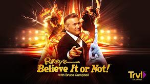 Ripley's Believe It or Not! thumbnail