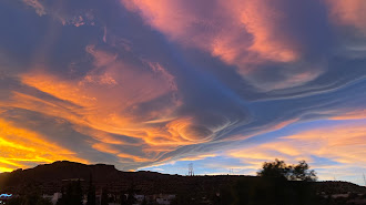 Imagen compartida por Bisbal y realizada en Huércal de Almería.