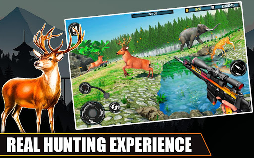 Wild Animal Hunt 2020 screenshot 1