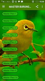 Master Pleci Mp3 New - náhled