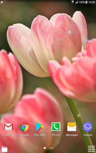 Beautiful Spring Flowers Live Wallpaper 1.0.4 screenshots 10