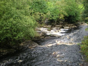 Photo: PW - From Great Shunner Fell to Tan Hill: River Swale
