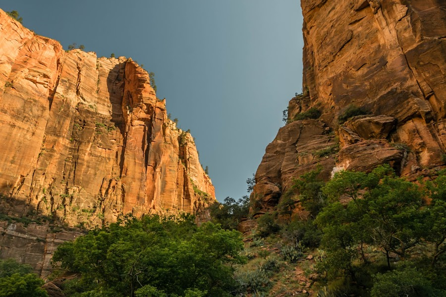 Zion National Park by Keith Ellington - Landscapes Mountains & Hills