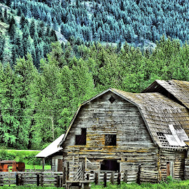The Old Barn by Don Mann - Buildings & Architecture Decaying & Abandoned
