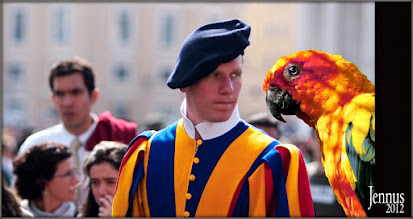 Photo: Swiss Guard and parrot