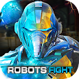 Real X-Ray Robot Fighting Game