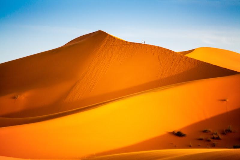 Microbi nel deserto di tolmino