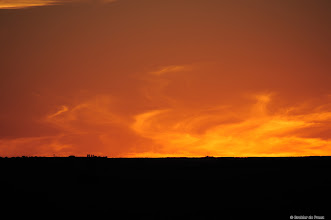 Photo: And a final goodbye to the weekend at the Mokala National Park from a flaming sunset.