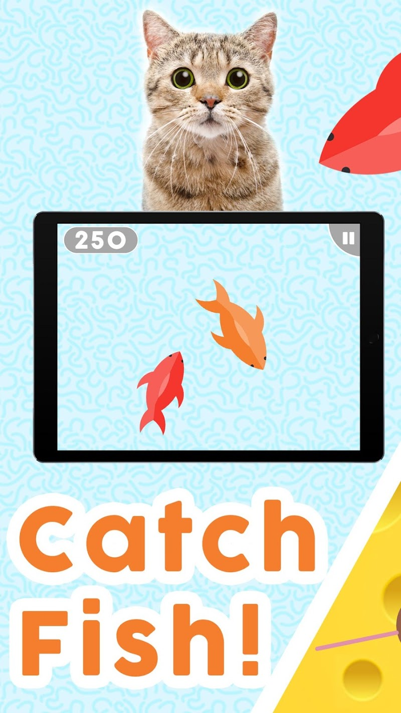 Games for Cats! - Cat Fishing Mouse Chase Cat Game Cheat APK MOD Free Download 1.0.8