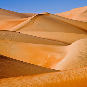 Crossing sands by Andrea Willmore - Landscapes Deserts ( criss-cross, sand, dimension, red, patterns, desert, empty quarter, liwa, abu dhabi, landscape, rub-al-khali, saudi arabia )