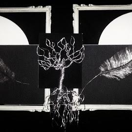 Elagantree by Brian Boyer - Black & White Objects & Still Life ( #art  #tree #wiretree #wireart )