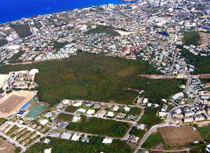 Photo: 2008 Ironwood Forest, Grand Cayman Aerial photo: Lois Blumenthal Jan.27, 2008 The two tracks that were cleared, both from  Walkers Road to the west and  Outpost Road to the east (which ran into a wetland), can clearly be seen. https://maps.google.com/maps?q=grand+cayman&hl=en&ll=19.280978,-81.381569&spn=0.006613,0.009602&hnear=Grand+Cayman&t=h&vpsrc=6&z=17