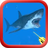 Spearfishing Underwater Hunter